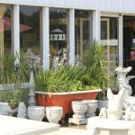 Office and Store ( Antiques - Collectibles - garden items )