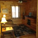 Chestnut Cabin Living Room