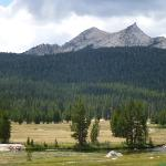 Photo of Tuolumne Meadows Grill