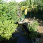 Cenote im Garten