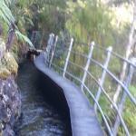 Pupu Hydro Walkway