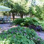 Serene Gardens Surrounding the Property
