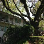 Foto de Andre's Riverview Bed and Breakfast