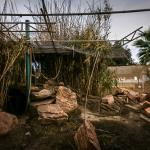 abandoned Southern Nevada Zoo -