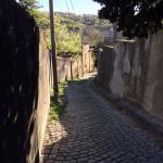 la via che porta alla villa