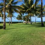 Garden next to the Beach of Cabarete