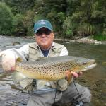 Several big brown trout caught