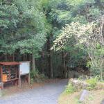 Pathway to Senhiro fall