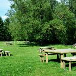 Sunny, Beer Garden.