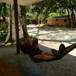 Loved the hammocks and free wifi! Great spot for morning coffee!