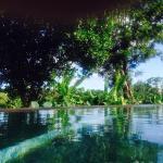 Pool 💙