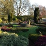 The Garden at The Bannut