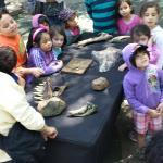 Photo de Kidspace Children's Museum