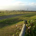 TVC - Tingara Close (Road) at Sunrise