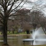 Roosevelt Wilson Park