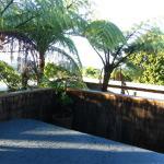 Photo of Lone Kauri Lodge