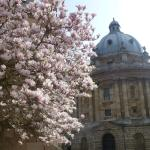 The memorable Bodleian Library