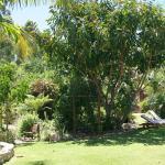 Littlewood Garden - parklike garden