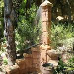Littlewood Garden Forest Shower