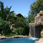 Littlewood Garden Pool with waterfall