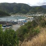 Picton Harbour, New Zealand