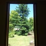 vista desde la ventana de la suite