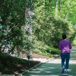 Walking down Corpus Christi Lane