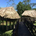 The two Bird Cabanas