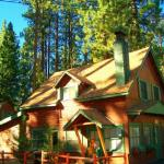 Summer sunshine at Golden Bear Cottages