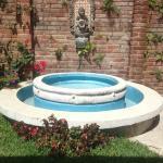 Una fuente en el jardín