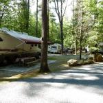 Campsites at King Phillips Campground