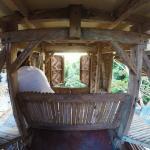 Enigmata Treehouse Ecolodge의 사진