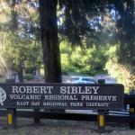 Sibley Volcanic Regional Preserve, Oakland, Ca