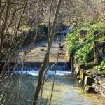 Wanderweg am Wehrenbach