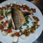 Sea bass with clams