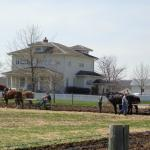 Horses plowing in front of the Craftsman House in April, 2014.