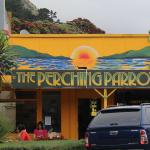 The Perching Parrot