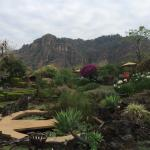 Foto de Villas Valle Mistico
