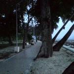 Foto de Dolphin Resort