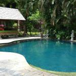 Pool near the front of the property