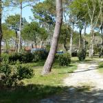 Photo de Camping Fontaine Vieille