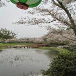 Fukashiro Pond