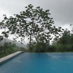 Foto de Rio Magnolia Nature Lodge