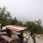 Harkerville Mountain Bike Trails