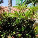 Garden and mosque
