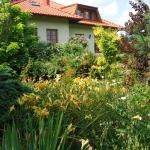Sommer Garden