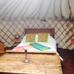 amazing family break in a Yurt
