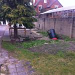 The awful garden
