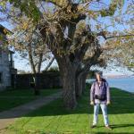frente del hotel sobre la ria del Ferrol