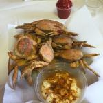 The Fat crab